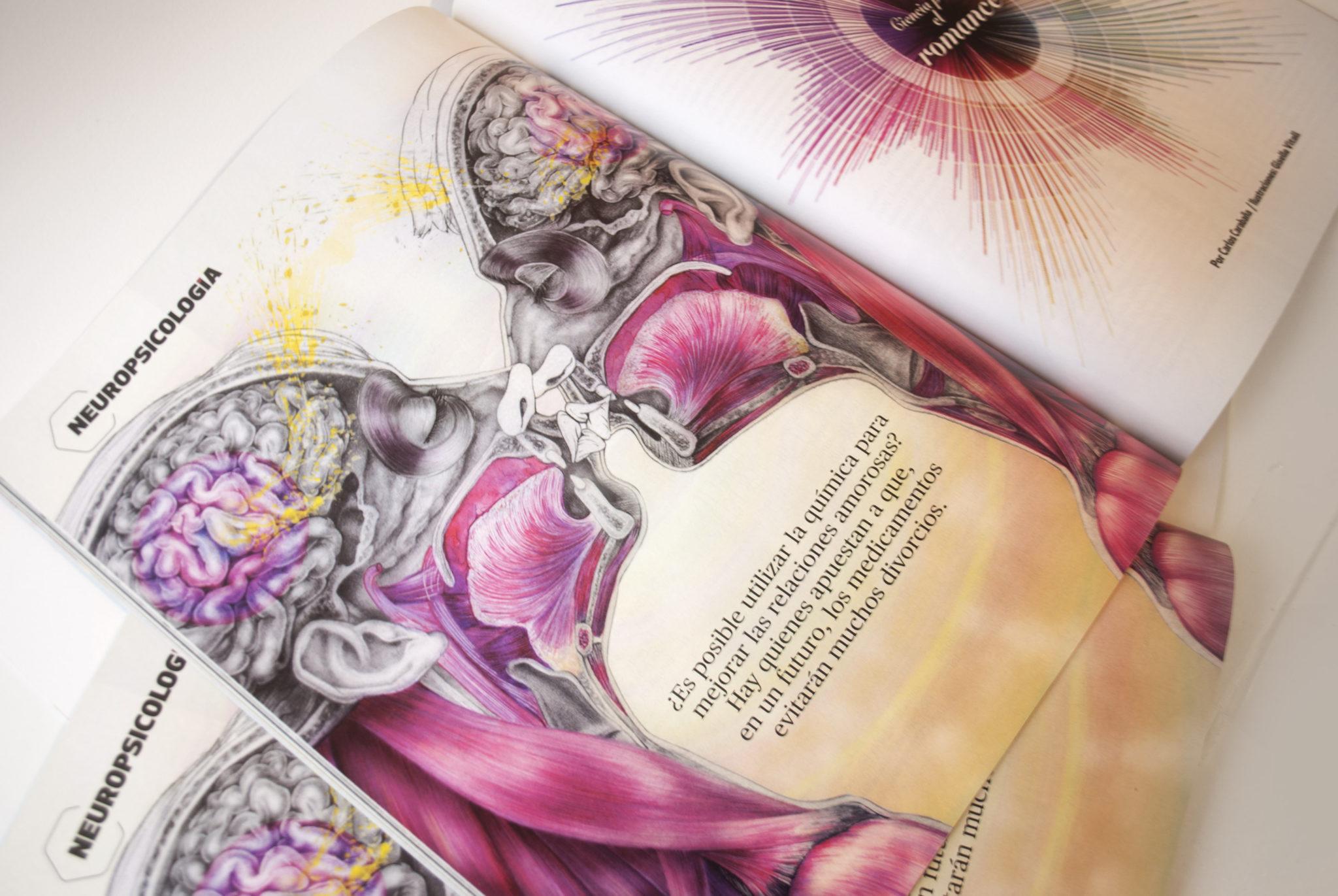 Quo México ilustracion divulgativa anatomia