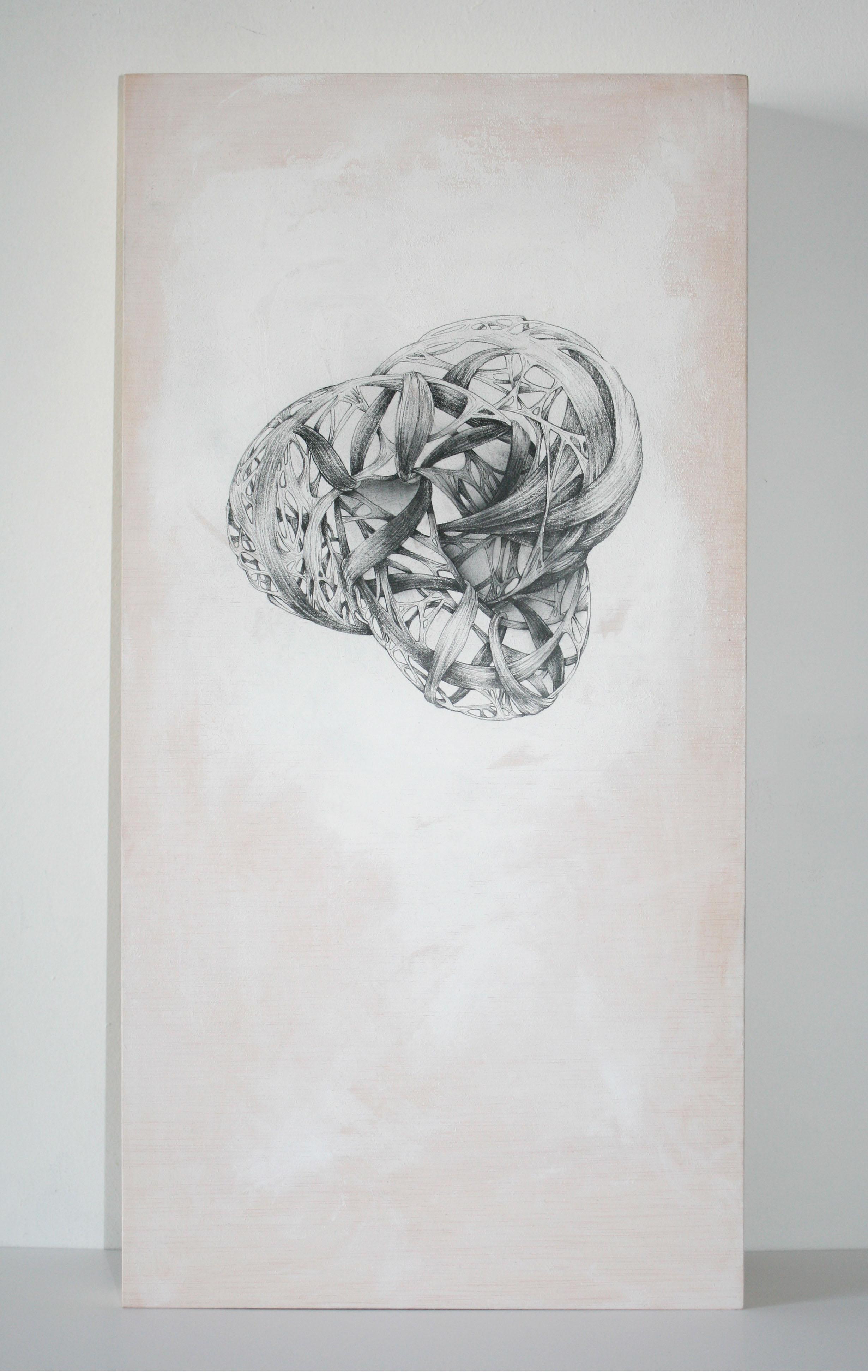 serie el juego del anatomista