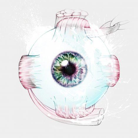 ojo curriculum vitae giselle vitali