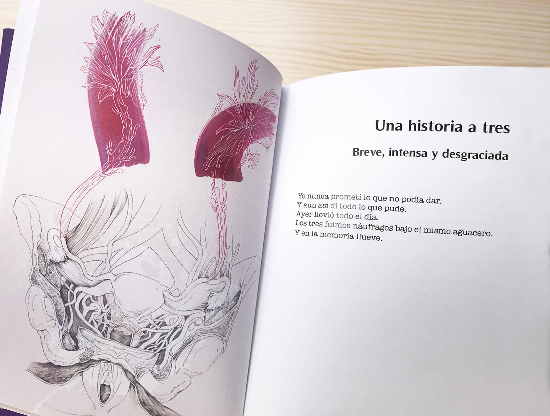 Batirse en vuelo de Lucía Etxebarria y editorial Hidroavión, ilustración de poesía