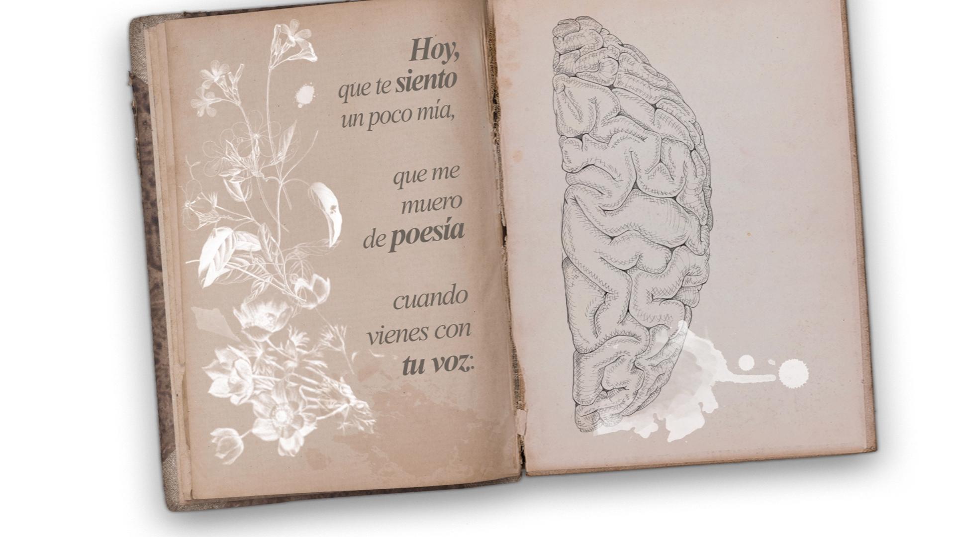 Disco Amerizaje[2] de Diego Ojeda, cancion Hoy con Mara Barros ilustrado por Giselle Vitali