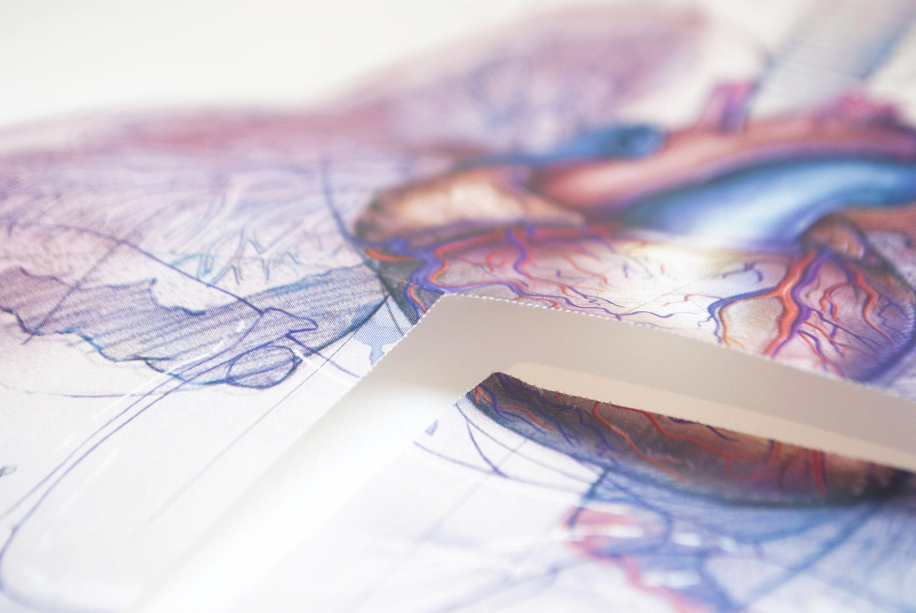 Chucherias de Arte, librino con chapa: Cortar por la línea #82