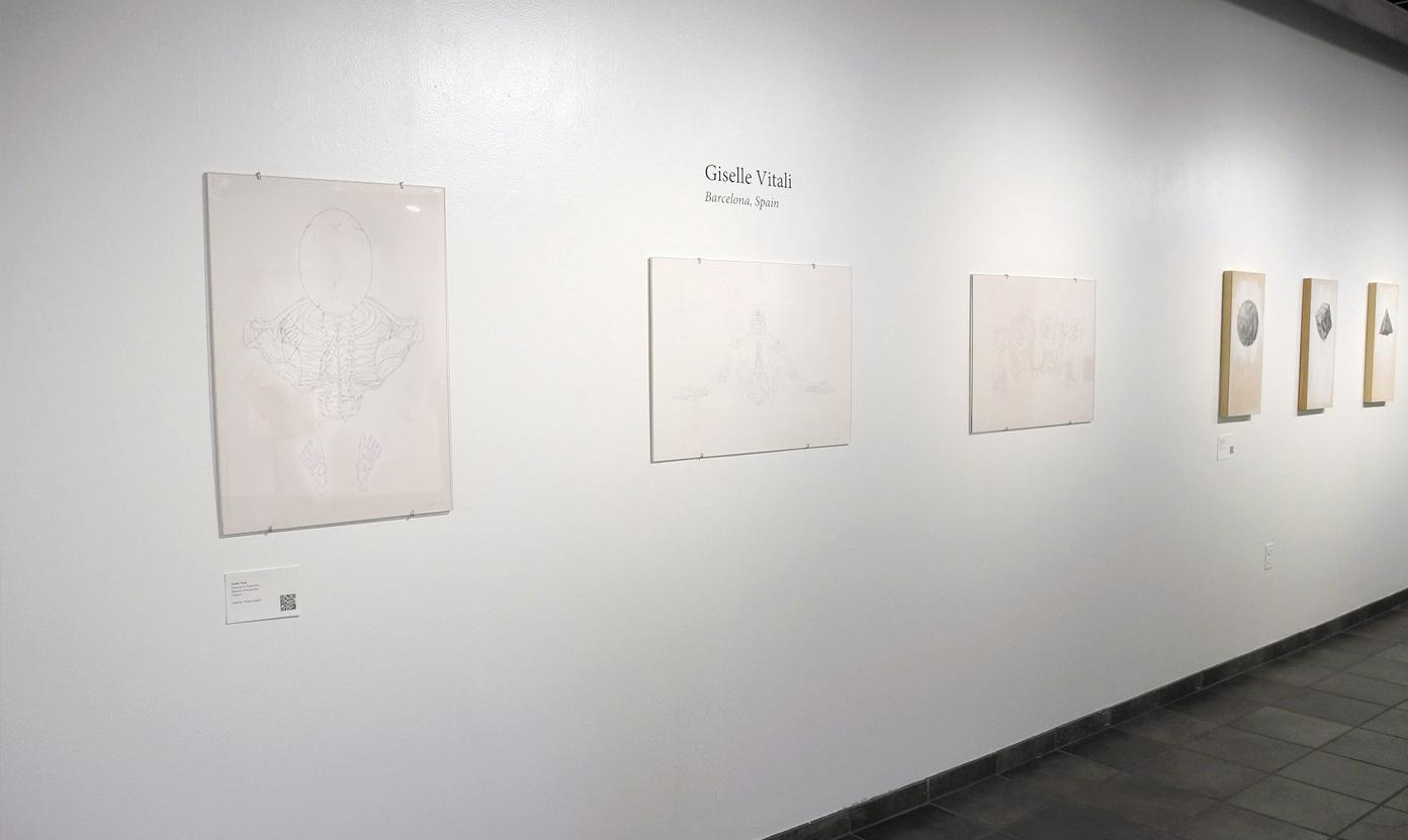 exposicion de arte baltimore EEUU giselle vitali